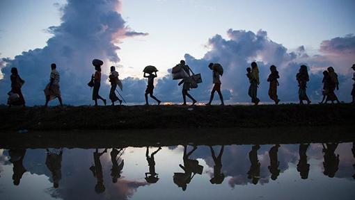 home-migration